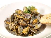 Italienare Venus Mussels med grönsaker arkivbild