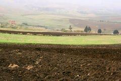 Italienische Ackerlandlandschaft Stockfotografie