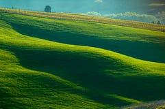 Italienische Felder Lizenzfreie Stockbilder