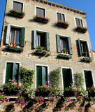 Italienische Fenster mit Blumen, Venedig Stockfoto