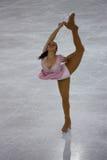 Italienische Gesamtes 2009 Abbildung Eislauf-Meisterschaften Lizenzfreie Stockfotos