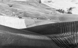 Italienische Landlandschaft am Sommer Lizenzfreies Stockbild