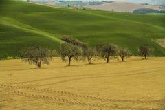 Italienische Landschaft nahe Cingoli See Stockfoto