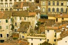 Italienische mit Ziegeln gedeckte Dachoberseiten und hoher Anstieg arbeitet im Garten stockfotografie