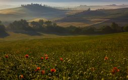 Italienische Region Toskana, Morgenlandschaft lizenzfreies stockbild