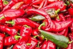 Italienische rote Pfeffer Stockbild