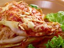 Italienische selbst gemachte Lasagne Lizenzfreies Stockfoto