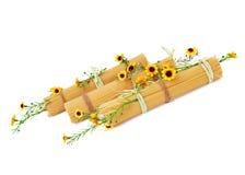 Italienische Spaghettis verziert mit gelben Blumen lizenzfreies stockbild