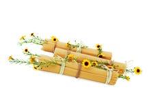 Italienische Spaghettis verziert mit gelben Blumen stockbilder