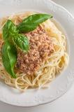 Italienische Teigwaren mit Soße Lizenzfreie Stockfotografie