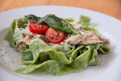 Italienische Teigwaren mit Spinat und Tomaten Lizenzfreie Stockfotos