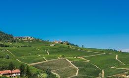 Italienische Weinberge Stockbilder