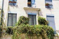 Italienischer Balkon der schönen Weinlese mit grünen Blumen Stockfotografie