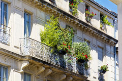 Italienischer Balkon der schönen Weinlese mit grünen Blumen Stockbilder