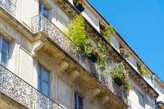 Italienischer Balkon der schönen Weinlese mit grünen Blumen Stockbild
