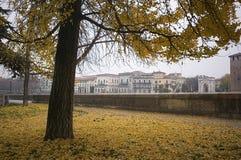 Italienischer Herbst in Verona Stockbild