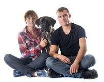 Italienischer Mastiff und Paare Lizenzfreie Stockfotos