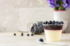 Italienischer Nachtisch panna Cotta mit Beerenmarmelade und frischen Blaubeeren Stockfotografie