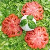 Italienischer Salat mit Tomate, Basilikum und Mozzarella Lizenzfreies Stockfoto