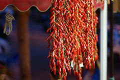 Italienischer scharfer Paprika in Tropea Kalabrien Lizenzfreies Stockfoto