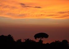 Italienischer Sonnenuntergang Stockbild