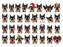 Italienischer Windhund Großer Satz von 32 verschiedenen kleinen Hunden vektor abbildung