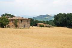 Italienisches Haus- und Erntefeld in der Landschaft stockbilder