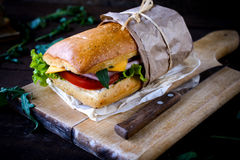 Italienisches panini Sandwich Stockbild