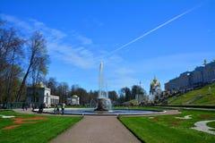 Italiensk bunke för springbrunn och stor slott i Peterhof, St Petersburg, Ryssland Fotografering för Bildbyråer