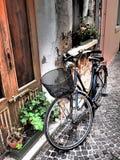 Italiensk gata med cyklar Arkivbild