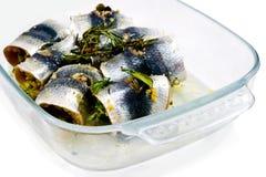 Italiensk kallad fiskroulade Arkivbild