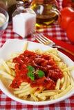italiensk macaronipasta Royaltyfri Bild