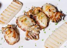Italiensk mat, grillade tioarmade bläckfiskar Arkivfoton