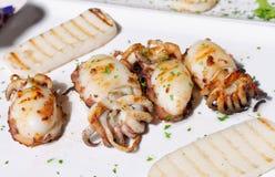 Italiensk mat, grillade tioarmade bläckfiskar Royaltyfri Bild