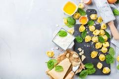 Italiensk mat och ingredienser, handgjord tortellini med spenat och ricotta Fotografering för Bildbyråer