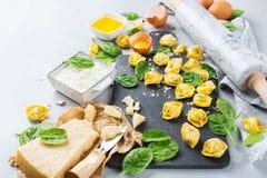 Italiensk mat och ingredienser, handgjord tortellini med spenat och ricotta Royaltyfri Bild