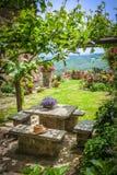 Italiensk medeltida stad av Civita di Bagnoregio, Italien Royaltyfri Foto