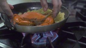 Italiensk pasta med Röda havetkrabban som förbereder sig i stekpanna på ugnbrand på kök Italiensk pasta för processförberedelse m lager videofilmer