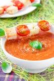 Kräm- soup för grönsak med tomaten och rostat bröd arkivfoto