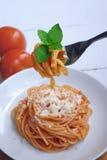 Italiensk spagetti med ost Fotografering för Bildbyråer