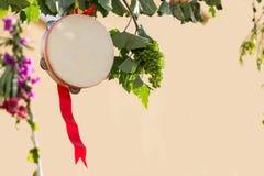 Italiensk tamburin med vinrankan, Salento, Apulia, tamburin för pizzica och tarantella royaltyfria bilder