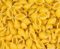 Italiensk textur för pastaconchigliebakgrund Arkivbilder