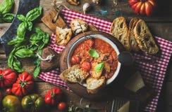 Italiensk tomat- och vitlöksoppa med basilika, bröd, parmesanost Arkivbild