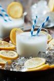 Italiensk traditionell citronsorbet Royaltyfria Foton
