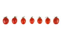 italienska lilla tomater Royaltyfri Bild