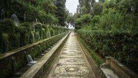 Italienska trädgårdar royaltyfri fotografi