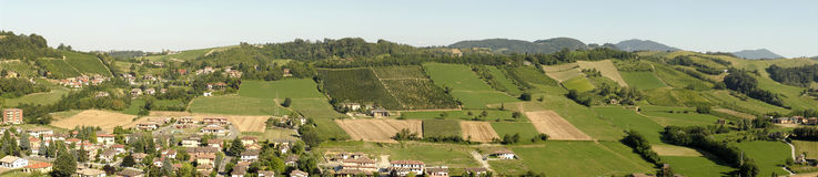 italienska vingårdar fotografering för bildbyråer