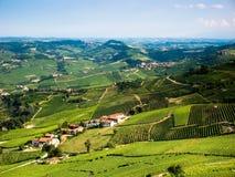 italienska vingårdar Royaltyfri Fotografi