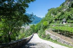 Italienskt norr landskap med vingårdar Arkivbild