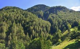 Italienskt slovenskt gränsområde Arkivfoto
